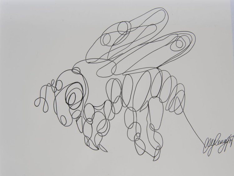 Single Line Text Art : Honeybee single line hand drawing artfinder