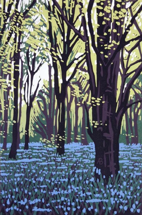 Stoke Wood Bluebells - Image 0