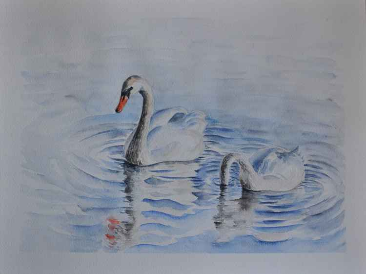 One of a kind original watercolor artwork - White swans in the Baltic sea -