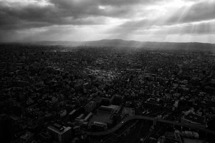Light in Osaka (Dark) -