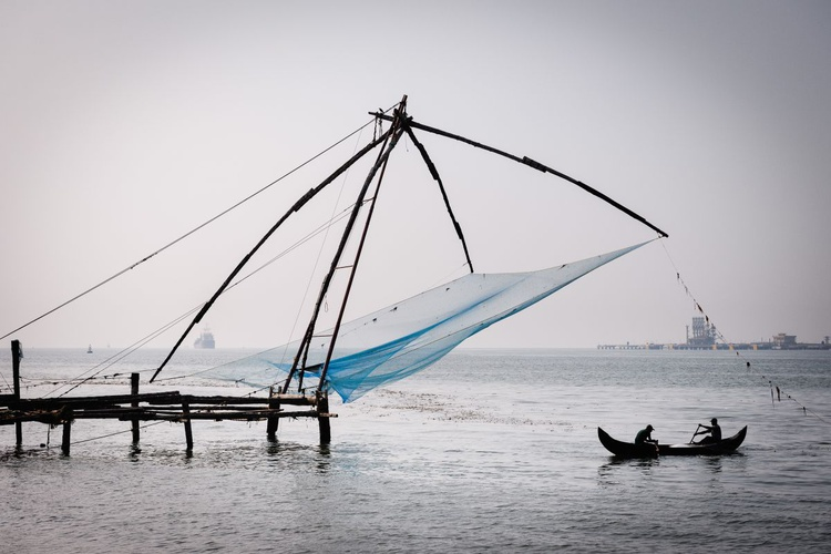 Fishermen, Fort Kochi. (119x84cm) - Image 0