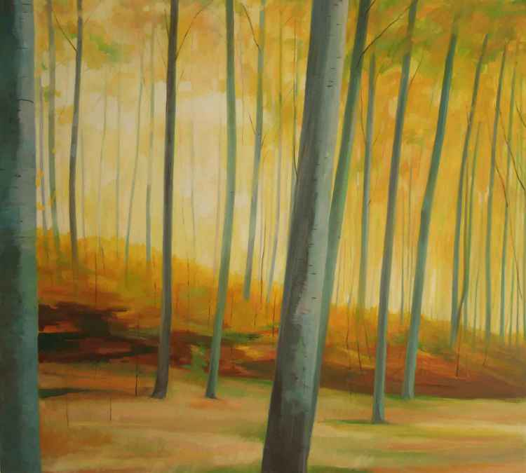 Forest, Falster -