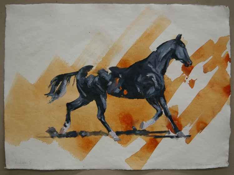 Arabian IV (study) -