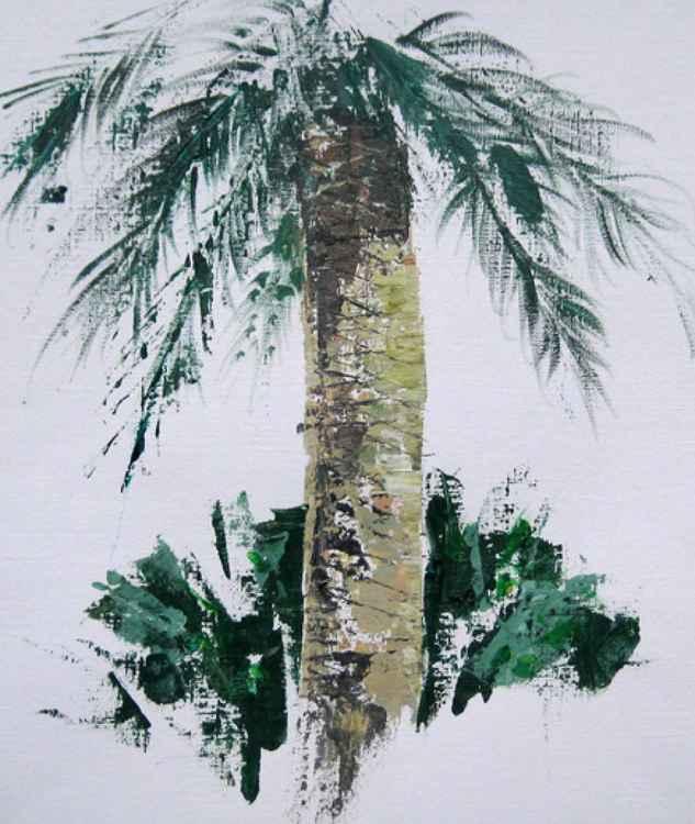 Collioure Palm -