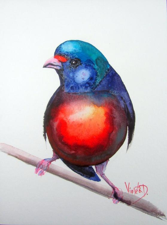 Finch Euphonia - Image 0