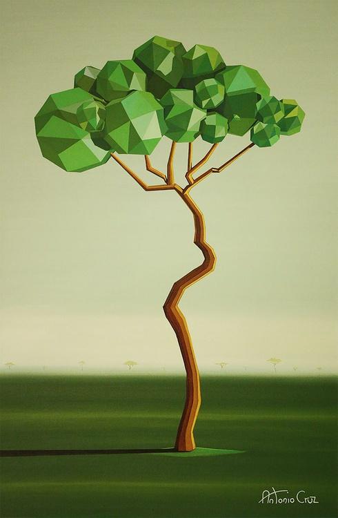 Acacia - Image 0