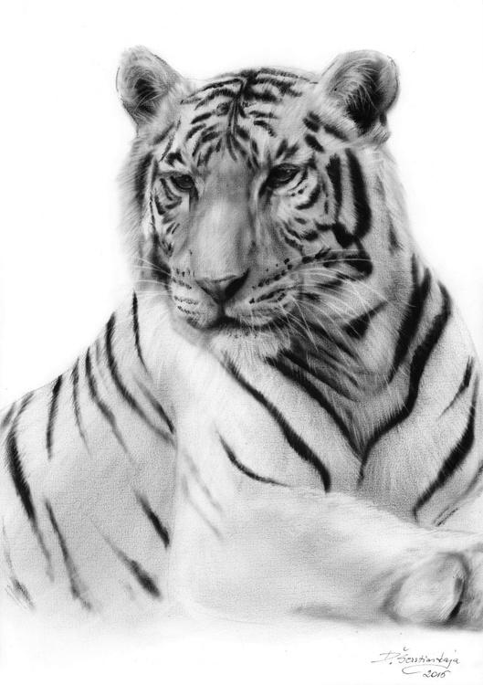 White Tiger - Image 0
