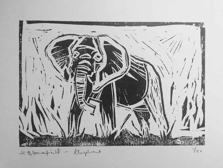 Lucky Elephant