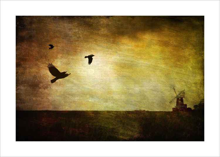 Windmill & Birds -