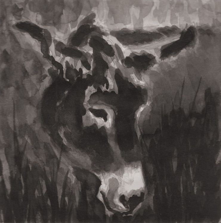 Donkey in the long grass no 1 - Image 0