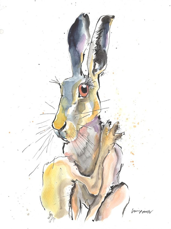 Hare - Embarrassed - Image 0