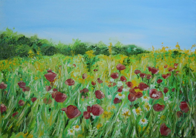 ''Field with poppies and camomile''-oil on canvas,landscape painting - Image 0