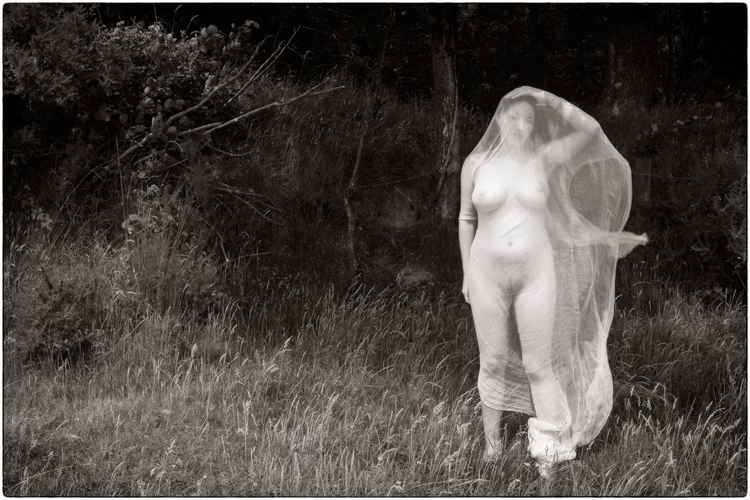 Lilith veiled, Powler's Piece woods, Devon 2010