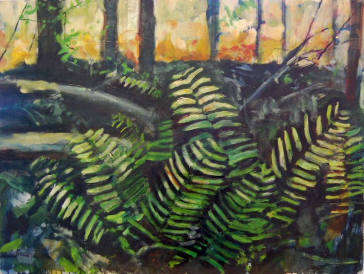 Ferns in the Marsh - Image 0