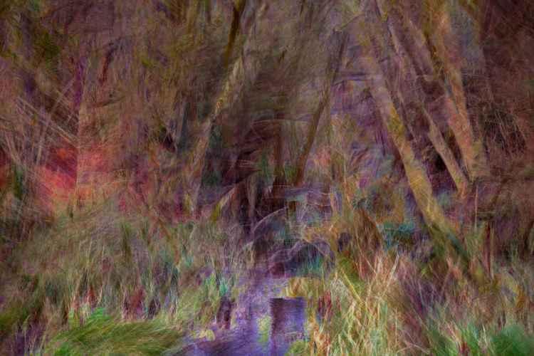 Reed running -