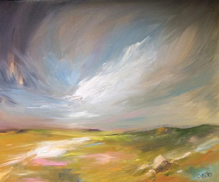 A View over Dartmoor - Image 0