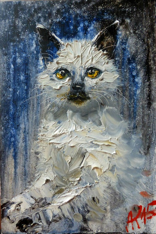 Kitten, original oil painting 20x30 cm - Image 0