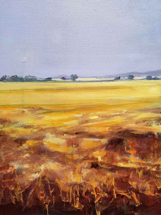 Cambridgeshire Landscape