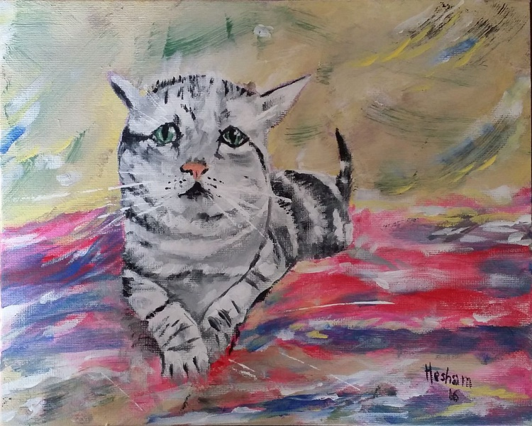 Sad Cat - Image 0