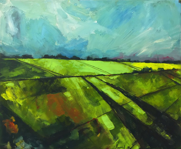 Fields, Alnmouth - Image 0