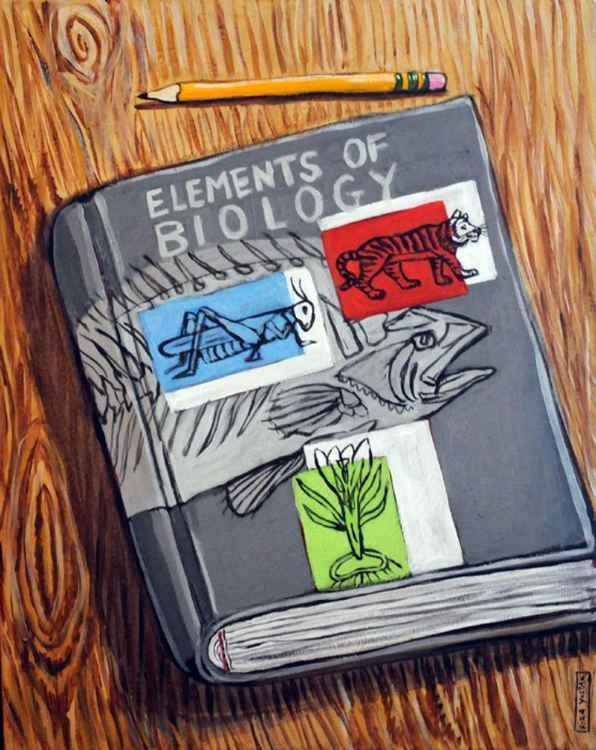 Biology Book -