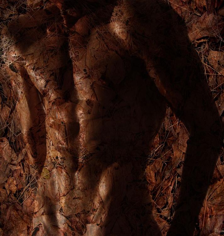 HIDE AND SEEK-MAN - Image 0