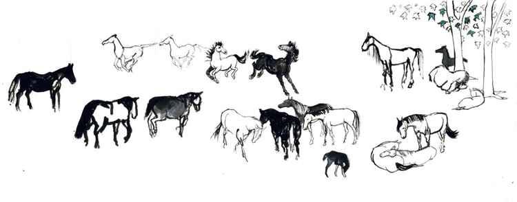 Nineteen Horses