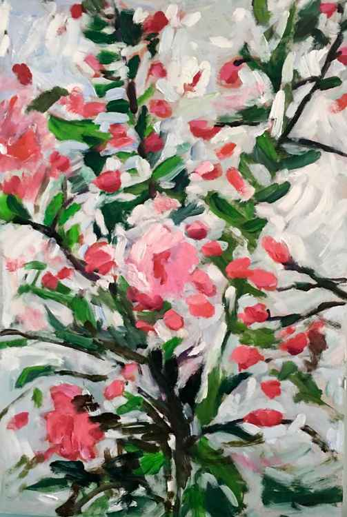Cherry Blossoms, medium sized impressionist still life original oil painting -