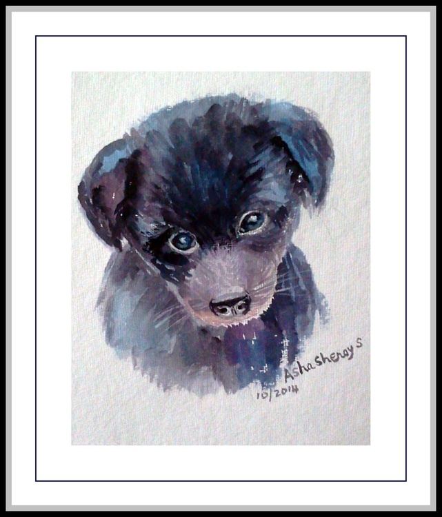 Up for adoption- The Black Puppy - Image 0