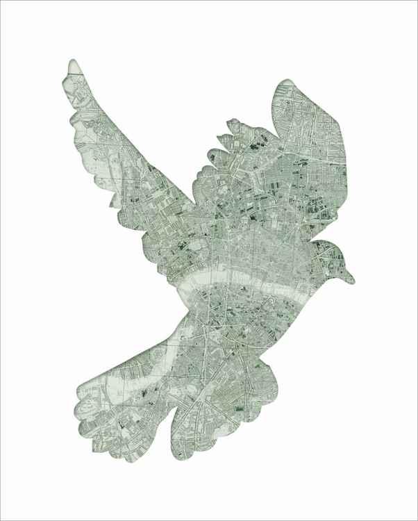 london pigeon map bird