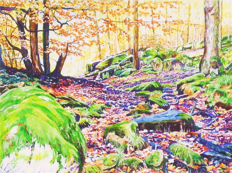 Autumn Light in Padley Gorge - Image 0