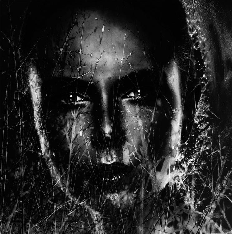 Looking Through Darkness - Image 0