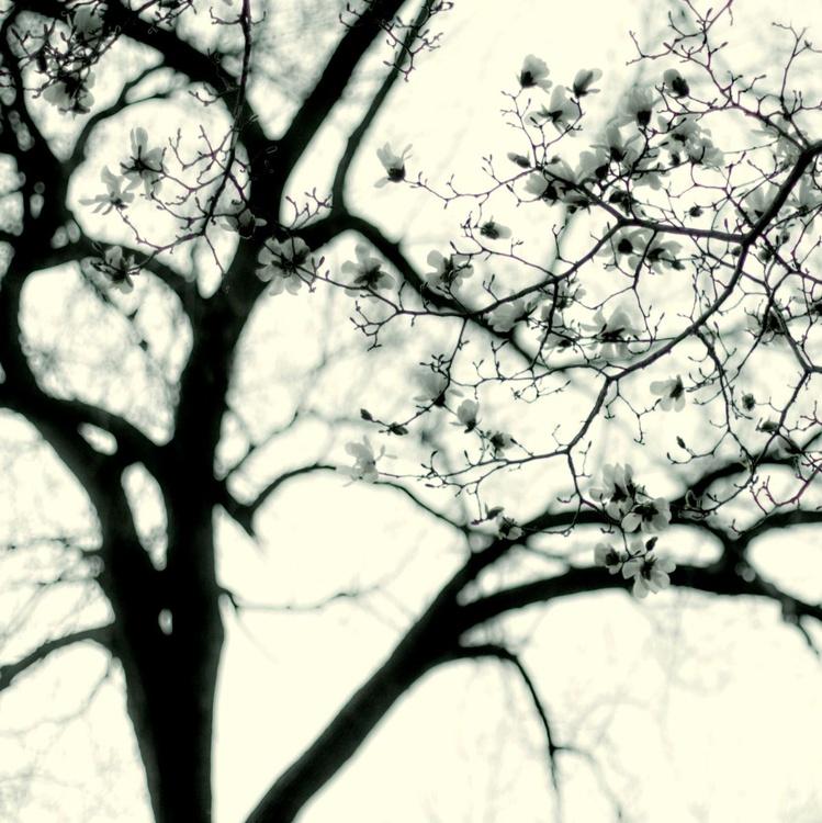 Outside the Rain - Image 0