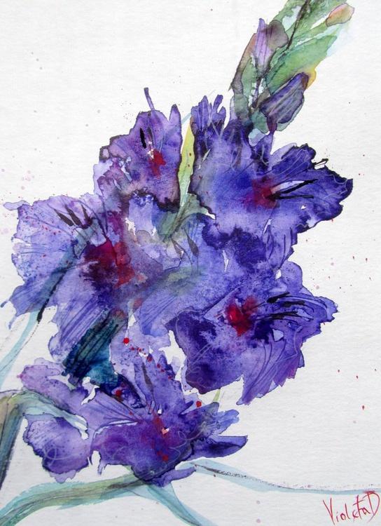 Gladiolus 7 - Image 0