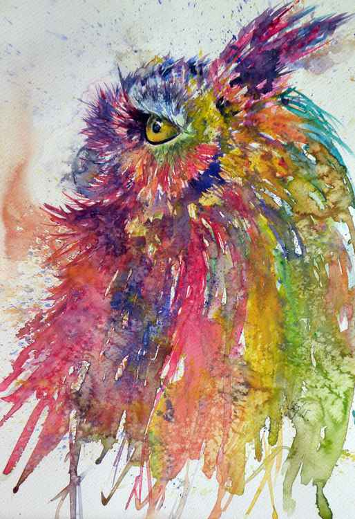 Colorful owl -