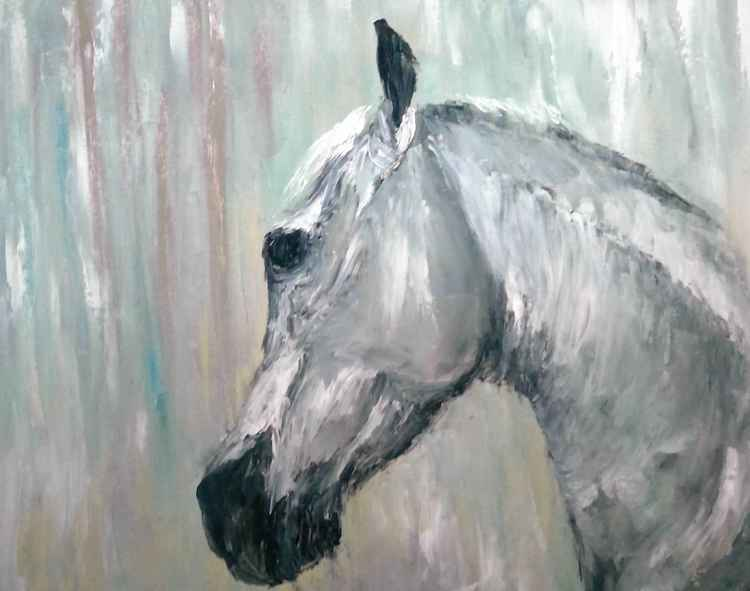 Horse 'lucid dreams' -