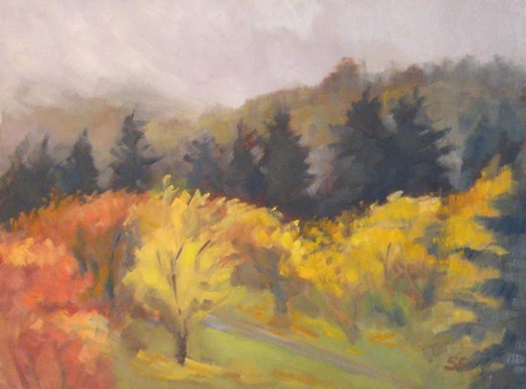 Maple Trail - Image 0