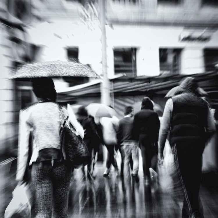 Crowd -
