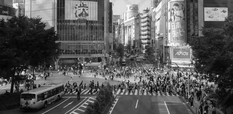 Shibuya Crossing, Tokyo -