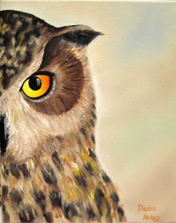 The OWL- I'm Watching You - Image 0
