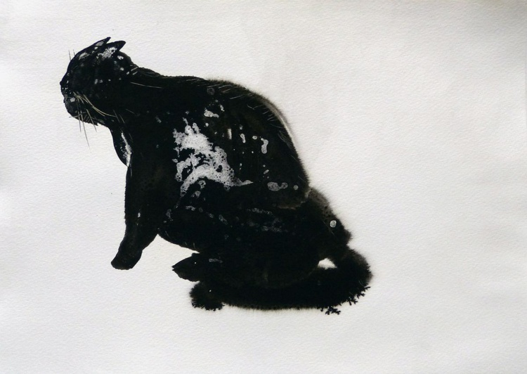 The Black Cat 3, ink drawing 29x42 cm - Image 0