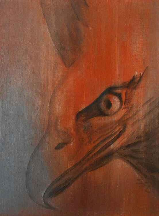 Eagle Spirit 4