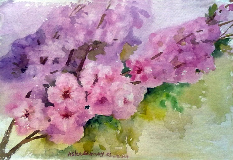 Cherry blossoms - Image 0