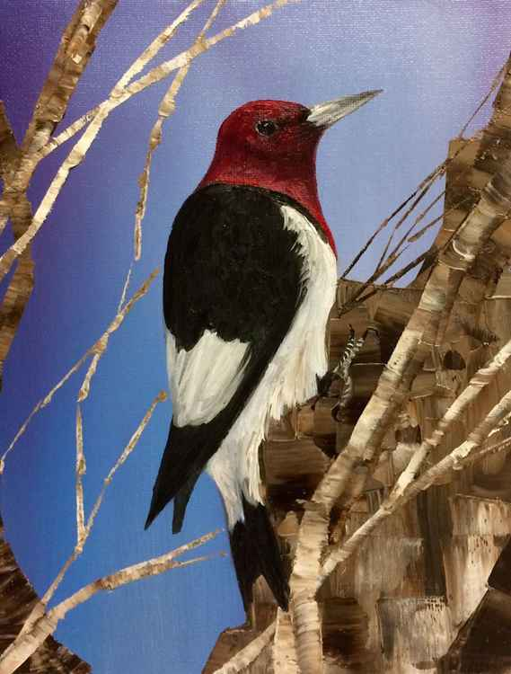 Red Headed Woodpecker -