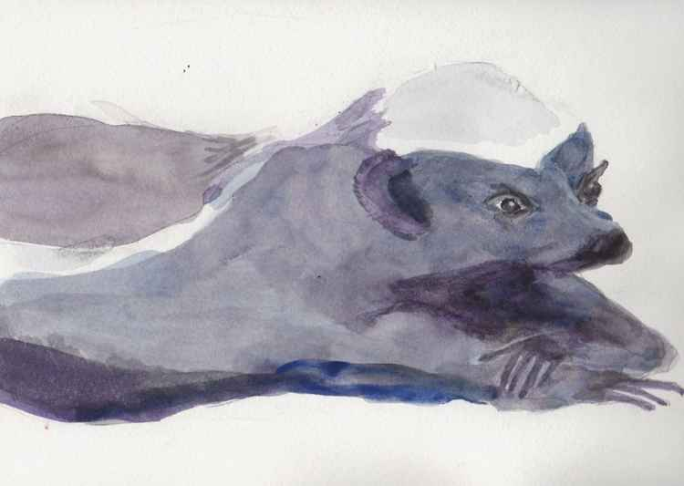 Honey Badger Reclining -