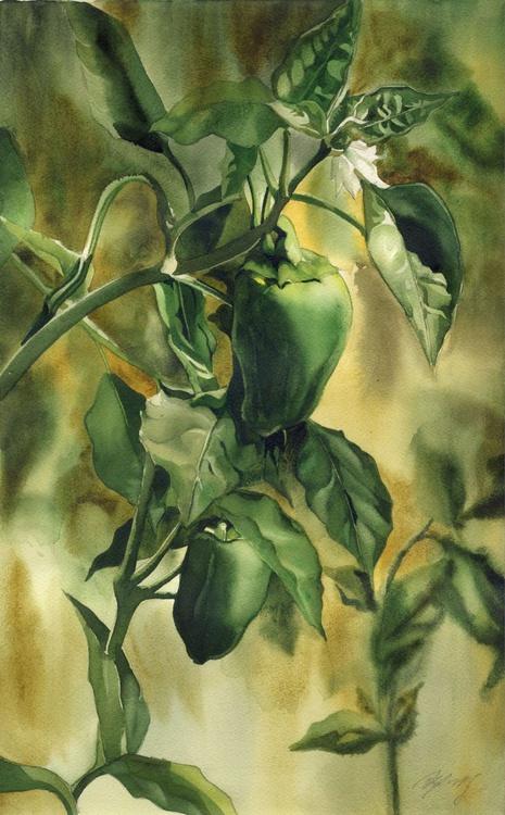 Garden Green Peppers - Image 0