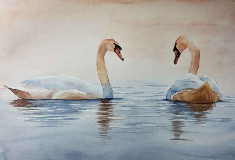 Serenity -