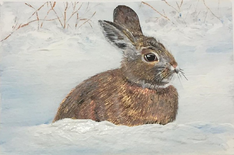 Bunny in the snow - Image 0