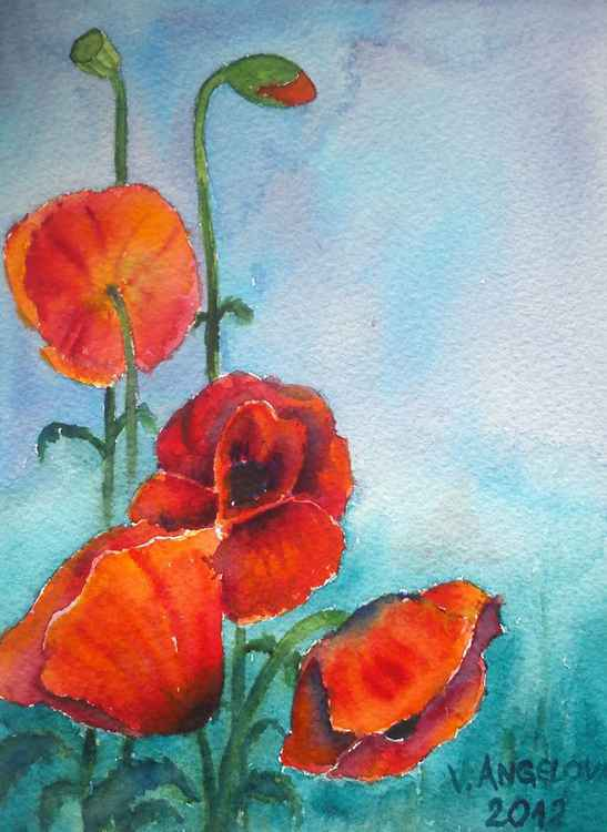 Red poppies garden -