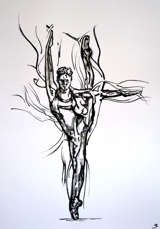 Black Swan  - Ink Art On A1 Large Big Size Paper - Image 0